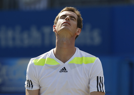 Stepanek Sees Off Defending Champ Murray at Queen's Club