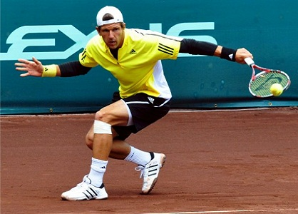 8 Jurgen Melzer Looked