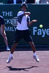 2010 US Men's Clay Court Championship Houston Somdev Devvarman jump