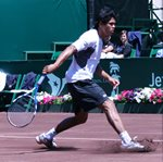 2010 US Men's Clay Court Championship Houston Somdev Devvarman Slide