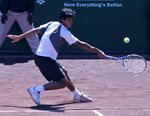 2010 US Men's Clay Court Championship Houston Somdev Devvarman Slide backhand