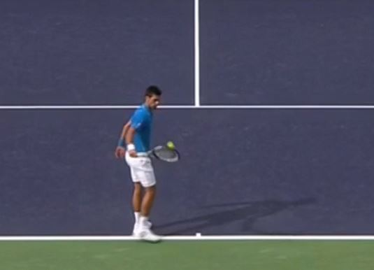 Vine: Djokovic's Magically Soft Hands