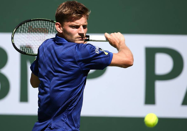 Goffin Reaches Consecutive Masters Semis in Miami