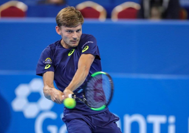 Goffin To Face Dimitrov In Sofia Final